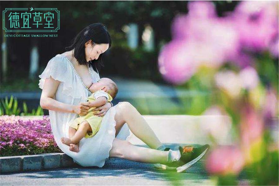 哺乳期喝燕窝的好处-燕窝-品牌加盟-功效做法-燕窝价格