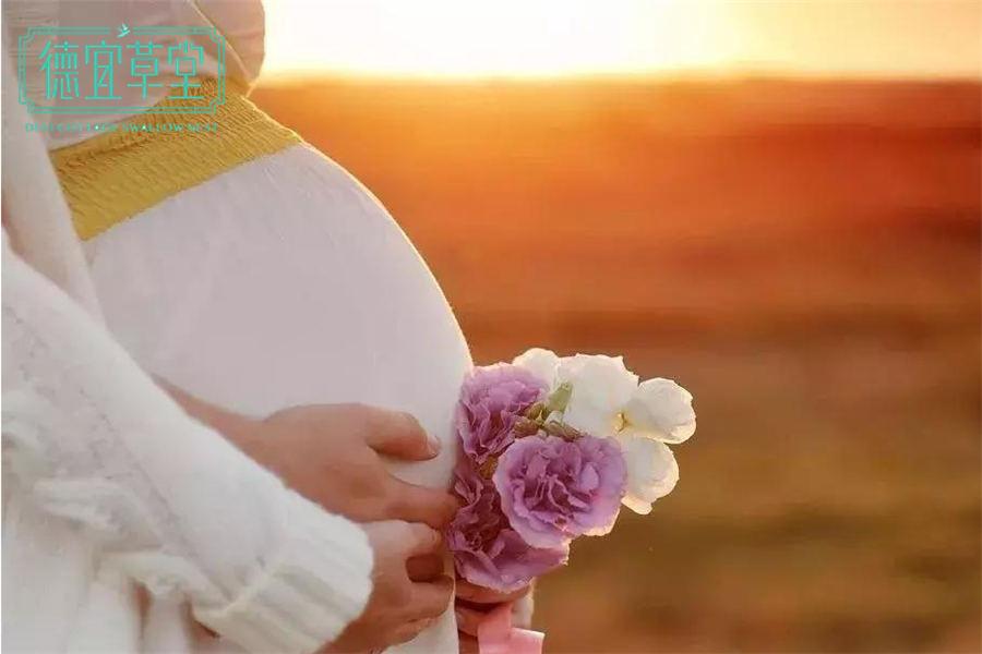 怀孕吃燕窝的最佳时间是什么时候-燕窝-品牌加盟-功效做法-燕窝价格