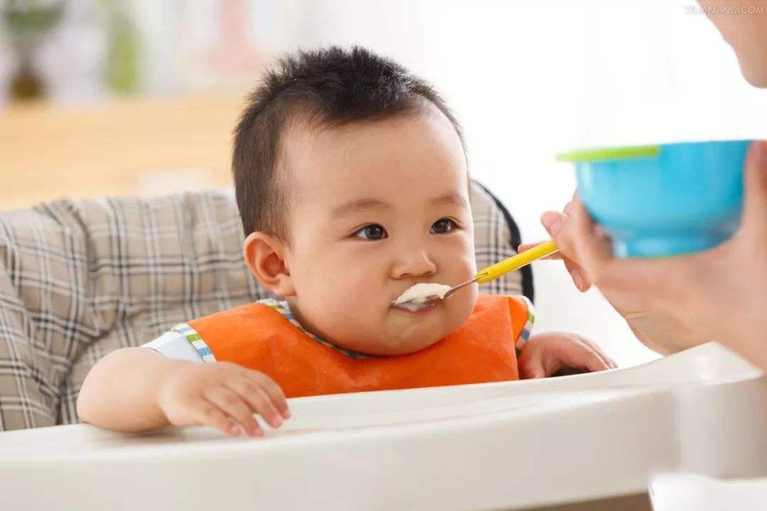婴儿可以吃燕窝吗